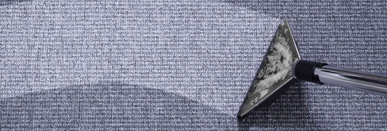 The Difference Between Dry Cleaning and Steam Cleaning your Carpet